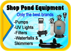 Pond supplies for sale Hanover Koi farms