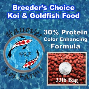 Hanover Koi farms koi and goldfish food color enhancing pellet